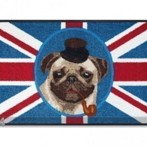 Kleen-Tex Matto British Pug 50x75 Cm