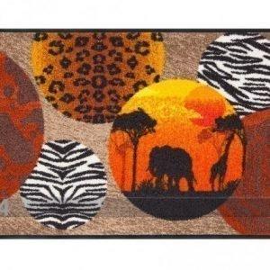 Salonloewe Matto Afrikka 50x75 Cm