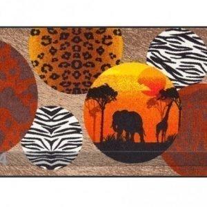 Salonloewe Matto Afrikka 75x120 Cm